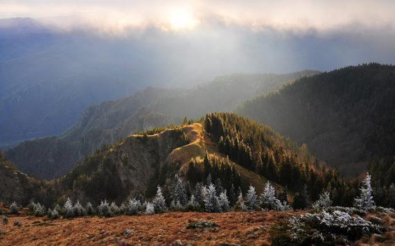 Prima data in muntii Coziei