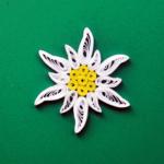 floare-de-colt
