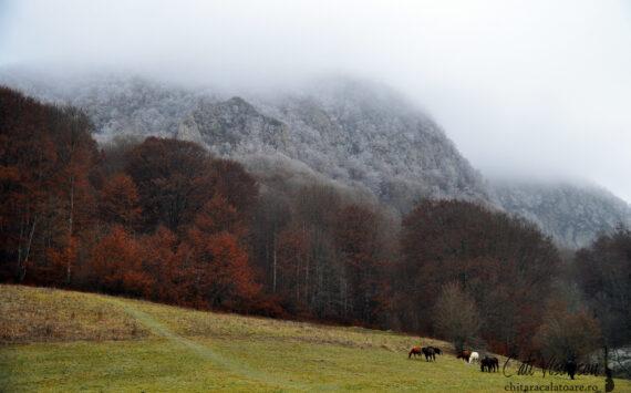 Muntii Persani: Cheile Varghisului, la granita dintre toamna si iarna