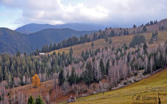 Leaota-Bucegi: Culmea Barbuletului si varful Bucsa