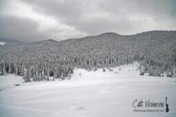 Muntii Bucegi: iesire de iarna pana aproape de refugiul Strunga